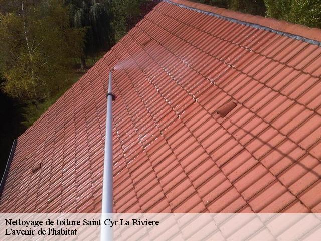 Nettoyage de toiture à Saint Cyr La Riviere 91690 tél :01.85.53.42.03