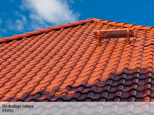 Traitement hydrofuge de toiture à Fontaine La Riviere tél :01.85.53.42.03